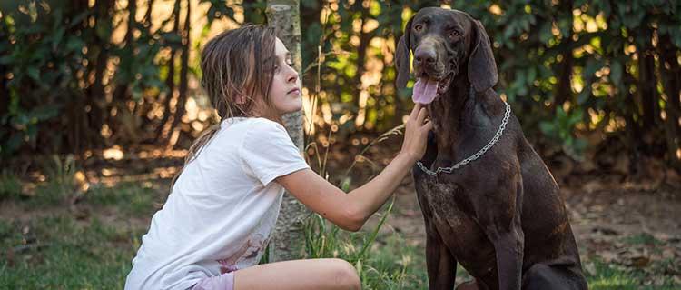 agriturismi che accettano cani